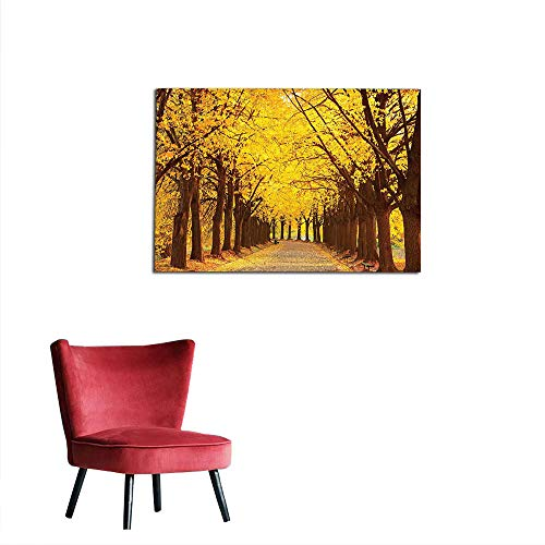 (kungfu Decoration Wallpaper Landscape,Botanical Garden Autumn Leaves in The Fall Linden Alley in Kiev Ukraine Image,Yellow Brown Wall Poster W27.5 x)