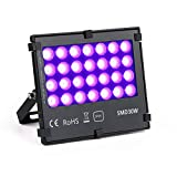 UV LED Black Light Flood Light, 30W UltraViolet Outdoor Flood Light, IP65 Waterproof for BlackLight Party,Stage Lighting, Aquarium, Body Paint, Fluorescent Poster,Glow in Dark Party and DJ Night Club.