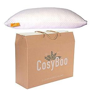 CosyBoo | Lot de 1 | Oreiller en Mousse Visco-élastique de Luxe en Bambou pour lit | Queen Size | Qualité hôtel 5…