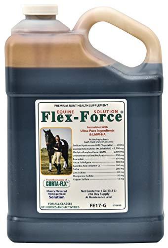 (CORTA-FLX Flex-Force Solution with HA 128 oz)