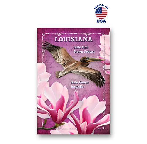 - LOUISIANA BIRD AND FLOWER postcard set of 20 identical postcards. LA state symbols post cards. Made in USA.