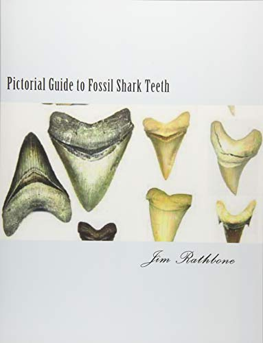 Prehistoric Teeth Shark (Pictorial Guide to Fossil Shark Teeth: Shark Teeth From around the World)