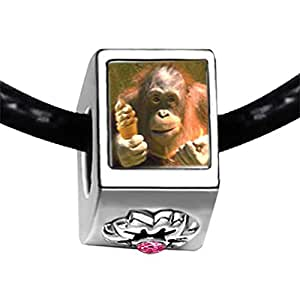 Chicforest Silver Plated Ice Cream Chimpanzee Photo Light Rose Crystal October Birthstone Flower Charm Beads Fits Pandora Bracelet