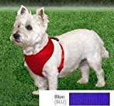 Coastal  Comfort Soft Adjustable Dog Dog Harness – Blue X-Small For Dogs 7-10 lbs, My Pet Supplies