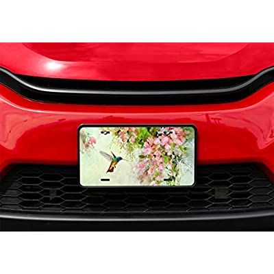 Amcove Lovely Hummingbird and Pink Flowers Oil Painting Art Vanity Front License Plate Tag,6 X 12 Inch: Automotive