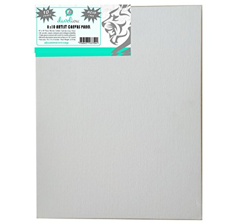Daveliou Canvas Panels inch Professional