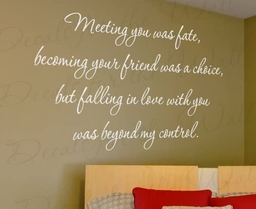 com meeting you was fate loving beyond my control love