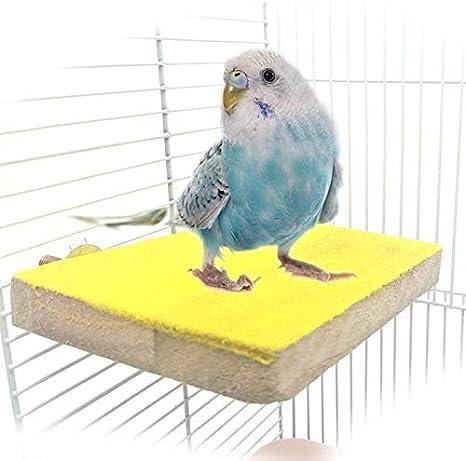 Rusisi - Soporte de madera para pájaros, diseño de loros, color gris africano