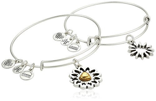 Alex and Ani Women's You are My Heart, Two Tone, Set of 2 Bangle Bracelet, Rafaelian Silver, Expandable (Alex And Ani Red Beaded Bracelet)