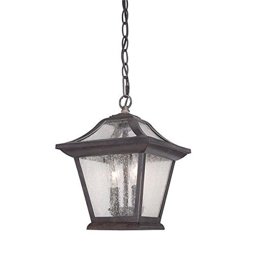 Acclaim 39016BC Aiken Collection 2-Light Outdoor Light Fixture Hanging Lantern, Black Coral by Acclaim