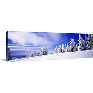 Premium Thick-Wrap Canvas Wall Art Print entitled Skiers Rocky Mountains Steamboat Springs CO