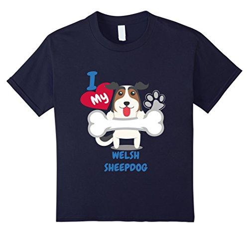 Welsh Sheep - 4
