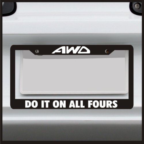 lowered license plate frame - 6