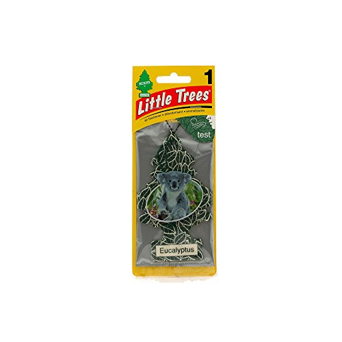Little Tree Car Air Freshener Eucalyptus