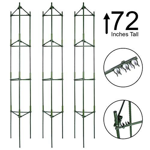 tomato cage tall - 2
