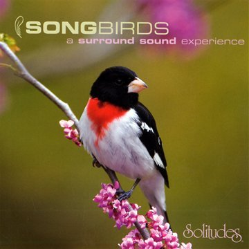 Songbirds: A Surround Sound Experience [SACD] by Music Design