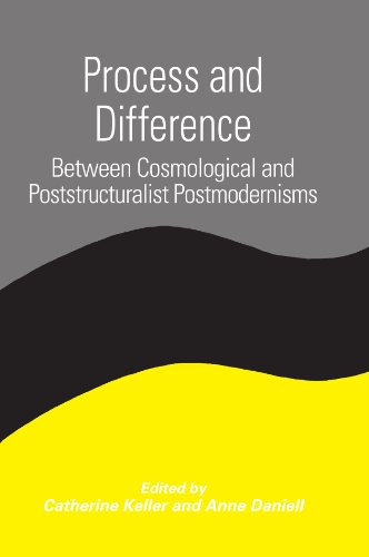 Process and Difference: Between Cosmological and Poststructuralist Postmodernisms (SUNY series in Constructive Postmodern Thought)