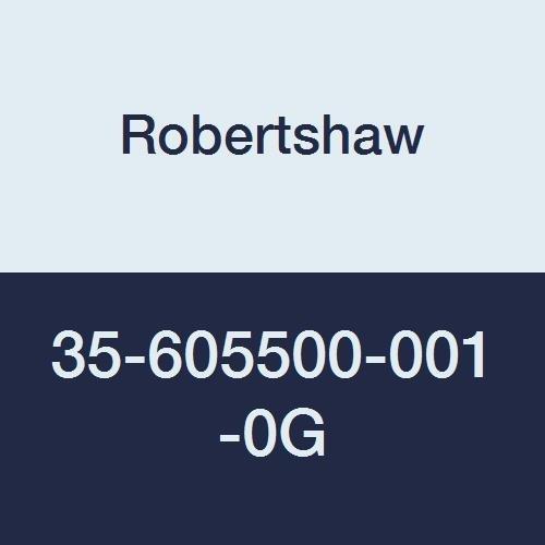 Robertshaw 35-605500-001-0G 24V D.S.I Fenwal