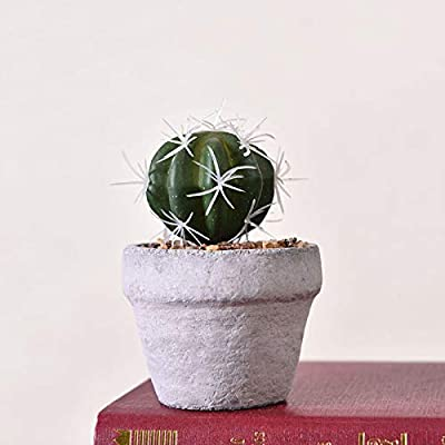 Decorations Simulation Cactus Green Plant Potted Prickly Pear Succulent Bonsai Indoor Plant Potted Fairy Column Aftifical Plants Tree - (Color: Style Four): Home & Kitchen
