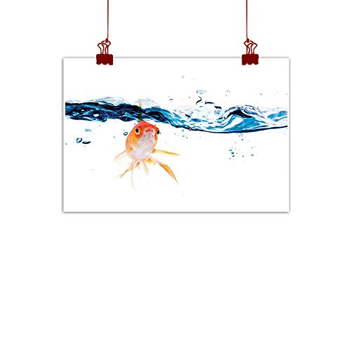 Wall Art Print Home Decor Fish,Goldfish Swimming Under Surface of Clear Water Fishbowl Liquid Motion Abstract Style,Blue Orange 32