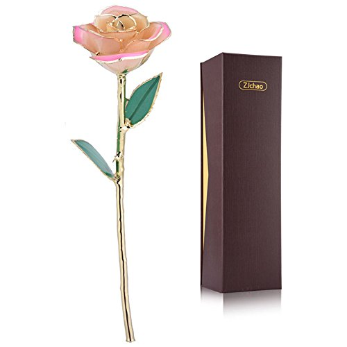 Pink White Gold Rose, ZJchao Gold Rose Love Forever Long Stem 24k Gold Dipped Rose , Gifts for Her (White-pink)