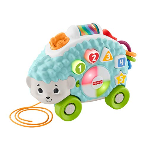Fisher-Price Linkimals Happy Shapes Hedgehog - Interactive Educational Toy with Music and Lights for Baby Ages 9 Months & Up (Price Moving Fisher)