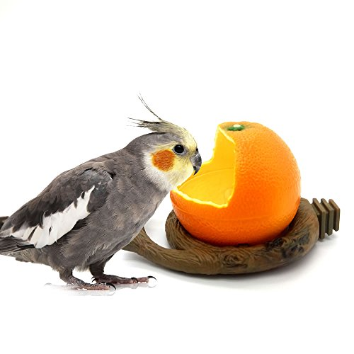 Mrli Pet Mrli Pet Birds Feeder Bowl,Bird Food Feeding Bowl Feed Cup for Small Parrots Cockatiels Conure Hamster Small Animal Drinking Water Container for Birds Cage Accessories Orange Shape Plastic price tips cheap