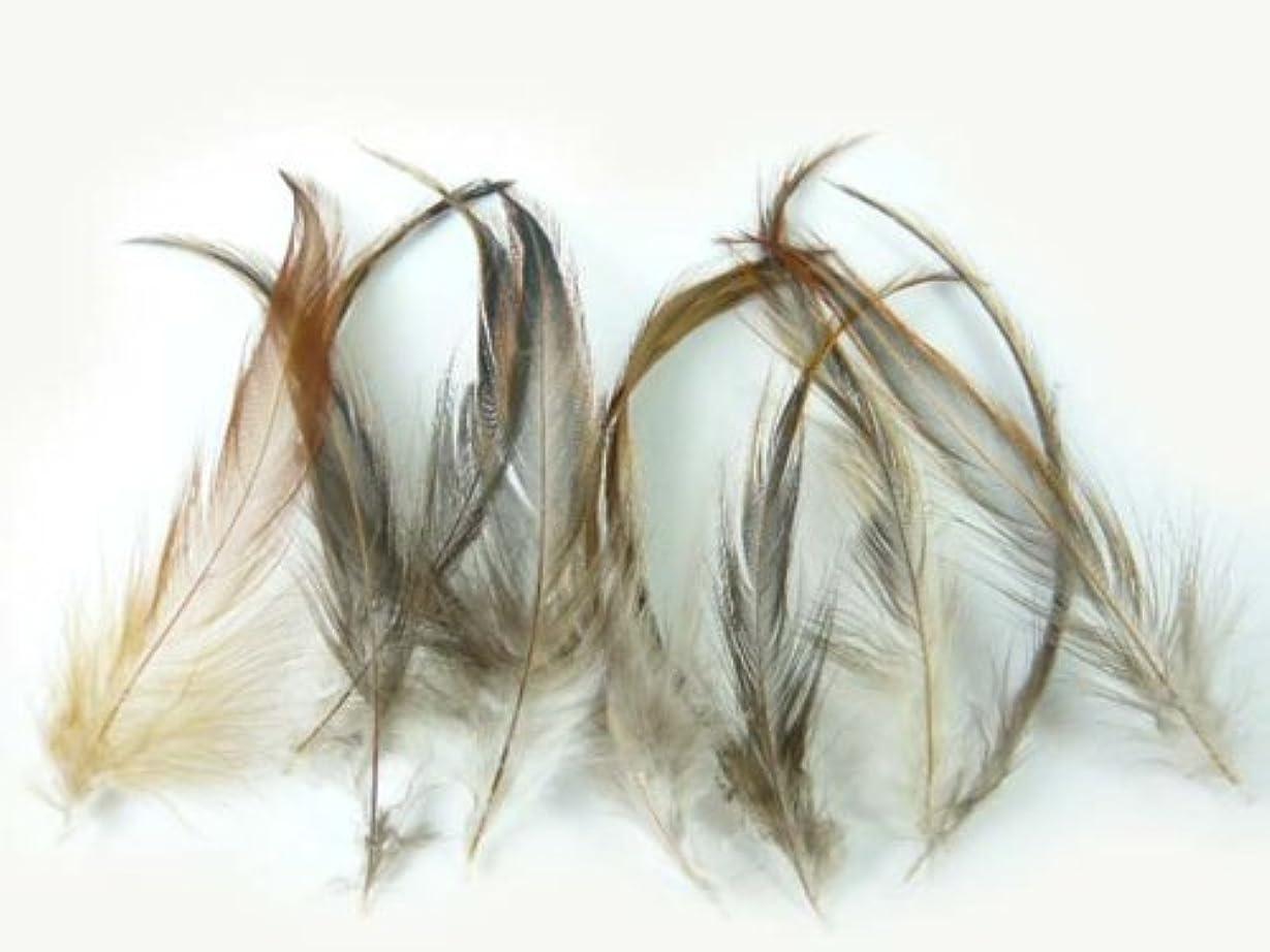今日どこか侵入する羽根 単品 10枚セット 約7cm~14cm ガチョウ 天然 フェザー アクセサリー 装飾 (オレンジ)