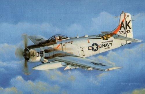 SWS 1/32 A-1H スカイレイダー 海軍型 プラスチックモデルキット B0065FNX44