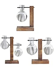 Flameer 3PCS Hydroponic Vase with Retro Wooden Stand Propagation Stations for Office Desk Wedding Decor