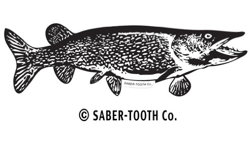 Saber-Tooth Co Northern Pike Silhouette Decal/sticker ~ Fishing, Hunting & Wildlife Series for Boats, Trucks, Cars (Small-7 X 2.5-reverse Facing) ()