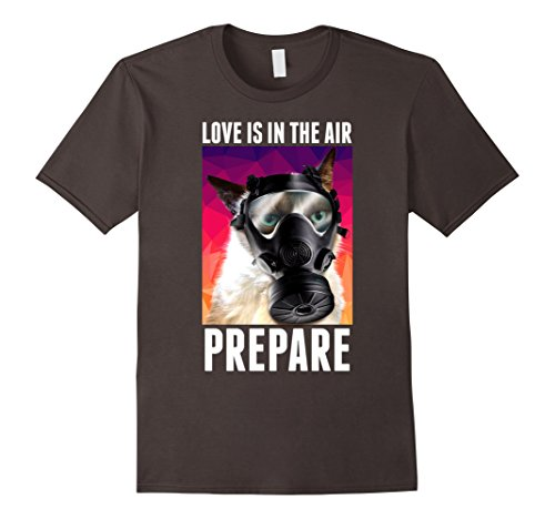 Mens Grumpy Cat Valentine's Prepare For Love Gas Mask T-Shirt 2XL Asphalt (Men Valentines)