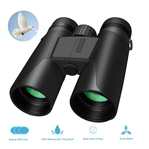 Portable Night Vision - Whew 10x42 Compact HD Binoculars for Adults, Portable and Waterproof Binoculars with Clear Weak Light Night Vision for Bird Watching, Travel,Stargazing, Hunting, Concerts, Sports (10x42)