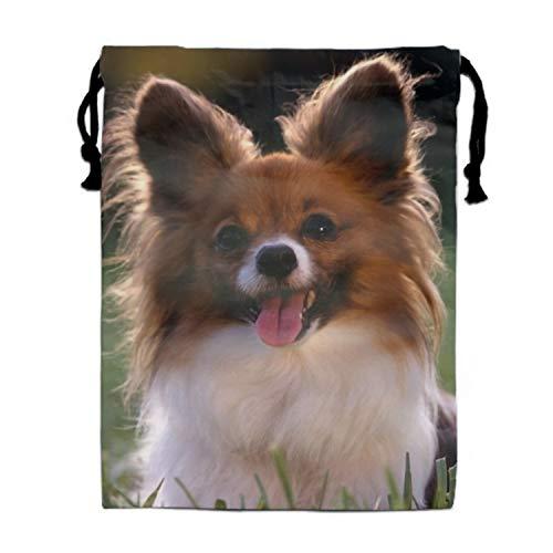 A Cute Little Papillion Print Drawstring Bag Rucksack Totes Gym Bag Party Favors for Kids