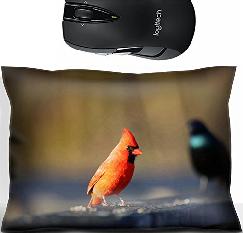 Liili Mouse Wrist Rest Office Decor Wrist Supporter Pillow One Cardinal and one Common Grackle birds Photo 20655150