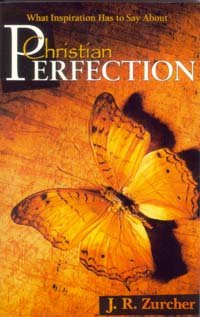 Download What inspiration has to say about Christian perfection pdf