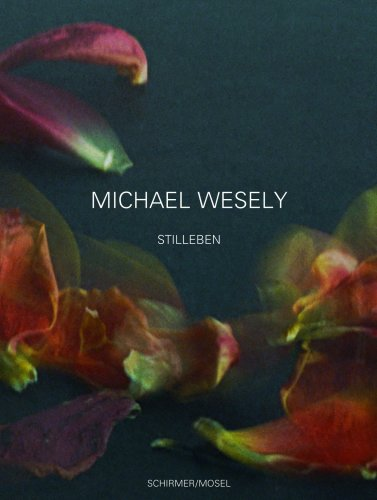 (Michael Wesely: Still Lifes 2001-2007)