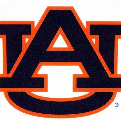 Rico NCAA Auburn Tigers Small Static Decal