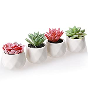 AmyHomie Artificial Plants Set of 4 Mini Fake Succulent Plants with Pots for Home Weeding Office Decoration 2
