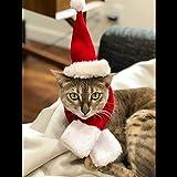 Namsan Pet Christmas Costumes - Cat Dog Santa Cap Costume Christmas Hat Suitfit for Christmas with Santa Hat and Scarf,Red