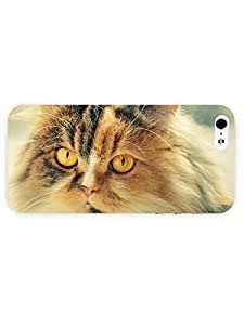 3d Full Wrap Case for iPhone 5/5s Animal Cat With Yellow Eyes