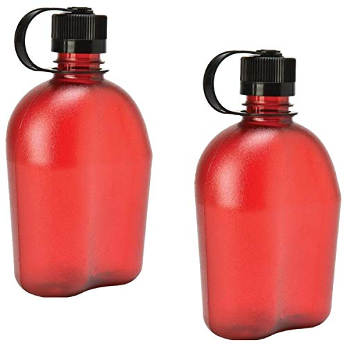 Nalgene Oasis 1qt Canteen Bottle - 2 Pack -