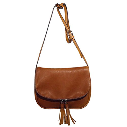 Donalworld Women Zipper Flap Tassel Crossbody Bag (Small Flap Tassel)