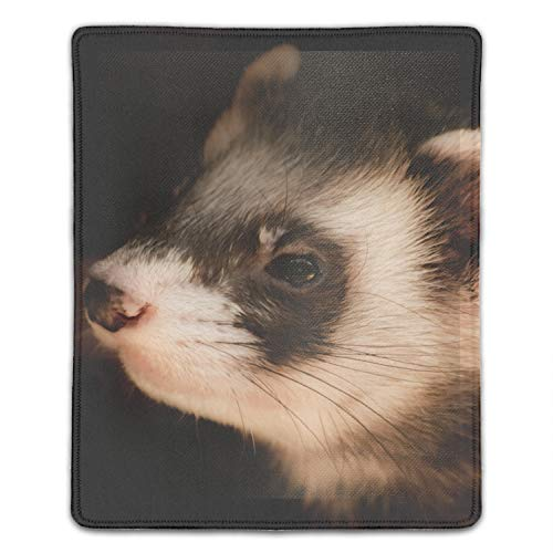 Black Ferrets Gaming Mouse Pad,Mouse Pad Unique Printed Mousepad 8.66 x 7.08 inch