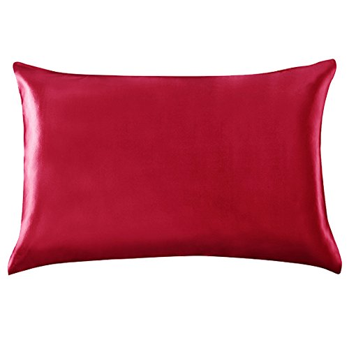 Wine Pure Silk (YANIBEST 19 Momme 100% Pure Natural Mulberry Silk Pillowcase for Hair & Facial Beauty Queen Standard Size, Pillow Shams Cover with Hidden Zipper (Standard, Wine red))