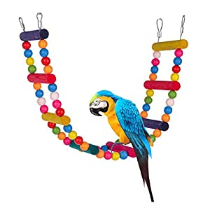 Bird Parrot climbing ladder, parrot toy, swings 59