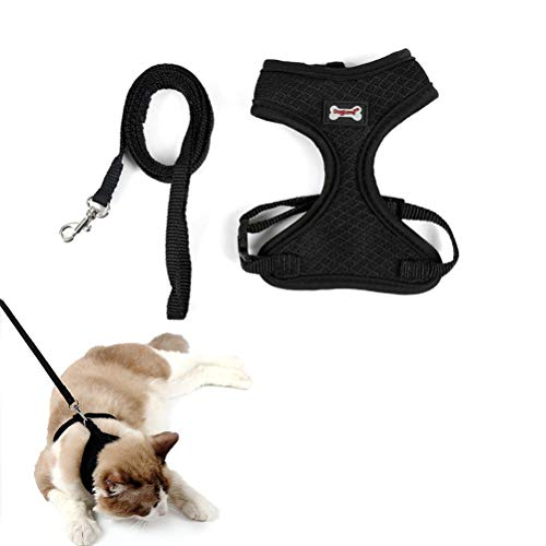 - Yu-Xiang Cat Mesh Harness with Leash Kitten Pink Vest for Walking Durable Costume for Small Dog and Cats Escape Proof Air Mesh Walking Jacket Padded Kitten Pets Clothes (Black)