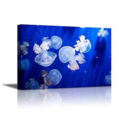 Canvas Wall Art - Jellyfish in an Aquarium with Blue Water | Modern Home Art Canvas Prints Giclee Printing Wrapped & Ready to Hang - 24