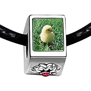 Chicforest Silver Plated Baby Chick Photo Red Zircon Crystal July Birthstone Flower Charm Beads Fit Pandora Chamilia Biagi Charm Bracelet