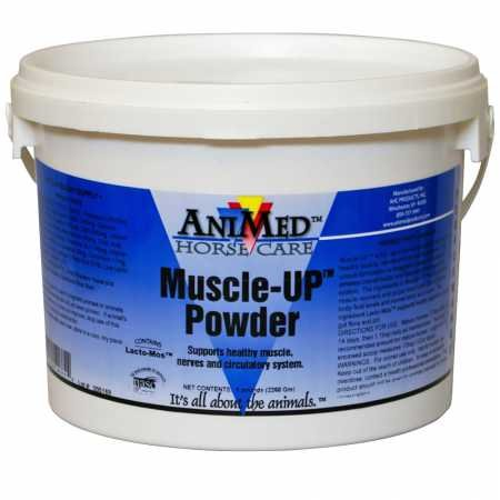 AniMed Muscle UP PWDR EQ 5# Pail (Best Muscle Building Supplements For Horses)